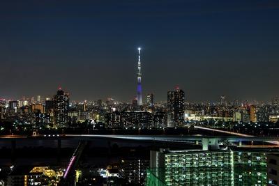 京都府をイメージした特別ライティング