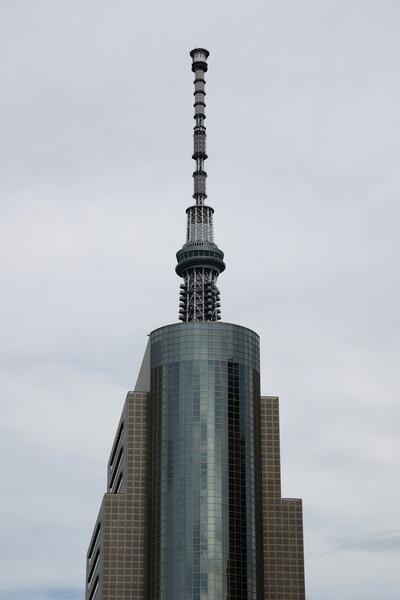 墨田区役所と合体した東京スカイツリー