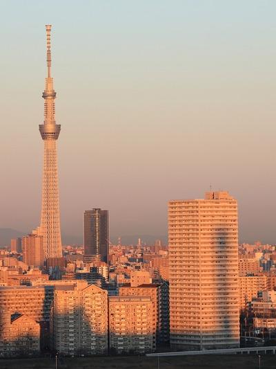 東京スカイツリーとタワーホール船堀の影