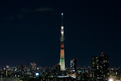 東京スカイツリー明花のマリーゴールド