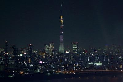 葛西臨海公園の観覧車から見た東京スカイツリー夜景