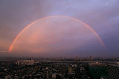 巨大な虹と東京スカイツリー