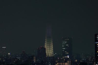 東京スカイツリー夜景「明花/ゆり」