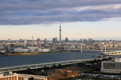 ダイヤと花の大観覧車から見た東京スカイツリー