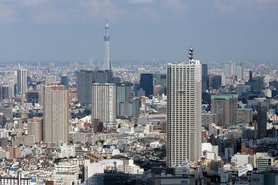 東京都庁から見た東京スカイツリー