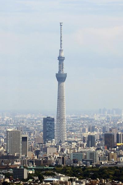 サンシャイン60から見た東京スカイツリー
