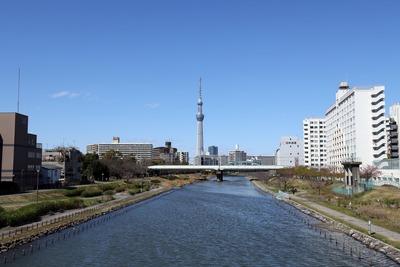 亀戸のふれあい橋から見た東京スカイツリー