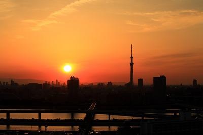 東京スカイツリーと夕景