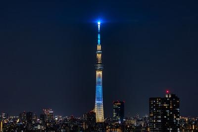 東京スカイツリー夜景「粋」