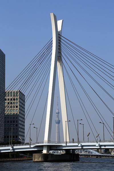 中央大橋と東京スカイツリー