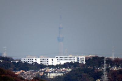 江ノ島のシーキャンドルから見た東京スカイツリー