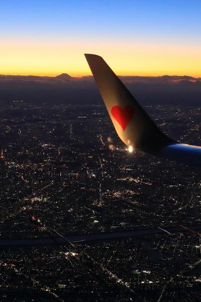 飛行機から見た東京スカイツリー夜景