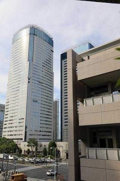 豊洲から見た東京スカイツリー