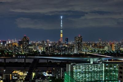 宮崎県をイメージした特別ライティング