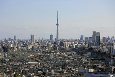 北とぴあから見た東京スカイツリー