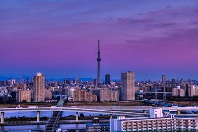ピンク色の朝焼けと東京スカイツリー
