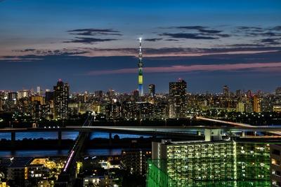 宮城県をイメージした特別ライティング