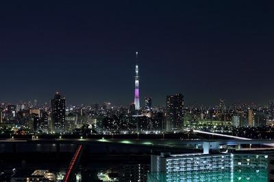 東京スカイツリー夜景「舞」