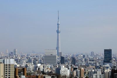 文京シビックセンターから見た東京タワー