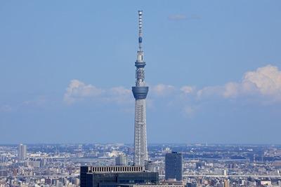 東京タワーから見た東京スカイツリー