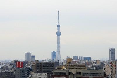 豊島区新庁舎から見た東京スカイツリー