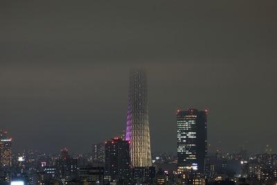 東京スカイツリー「雅」