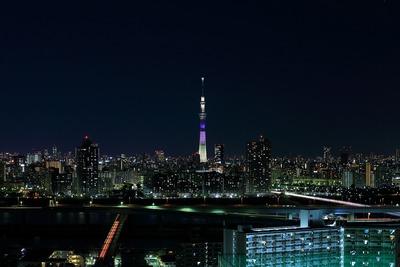 東京スカイツリー明花のラベンダー