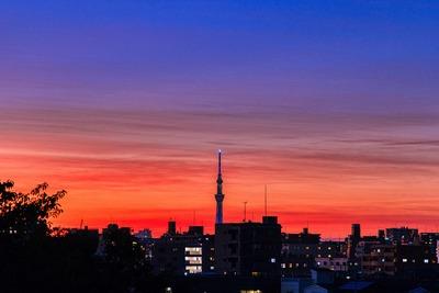 なぎさ公園から見た夕焼けと東京スカイツリー