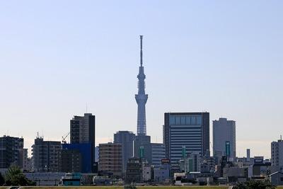 首都高C2から見た東京スカイツリー