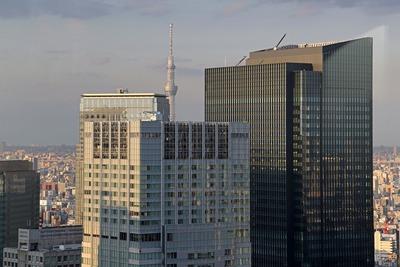 丸ビル最上階から見た東京スカイツリー
