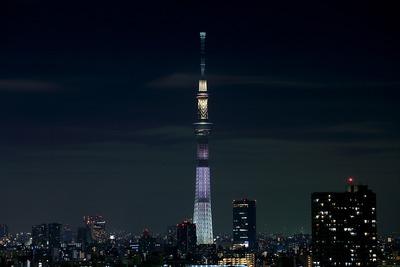 東京スカイツリーホワイトショコラ