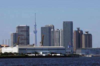 東雲のタワーマンション群と東京スカイツリー