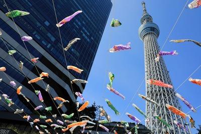こいのぼりと東京スカイツリー