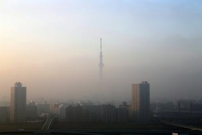 上だけ見えた東京スカイツリー
