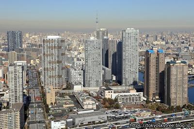 東雲のタワーマンション群と東京スカイツリーの空撮
