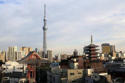 花やしきから見た東京スカイツリーと浅草寺