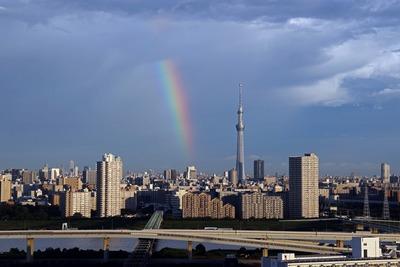東京スカイツリーと虹