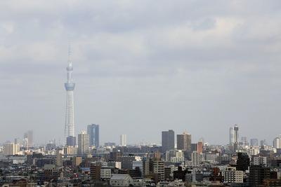 ホテルエミオン東京ベイの19階から見た東京スカイツリー
