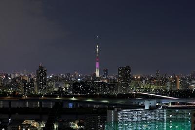 東京スカイツリー夜景「ハイビスカス」