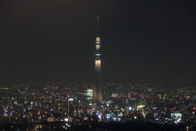 サンシャイン60から東京スカイツリー夜景「雅」