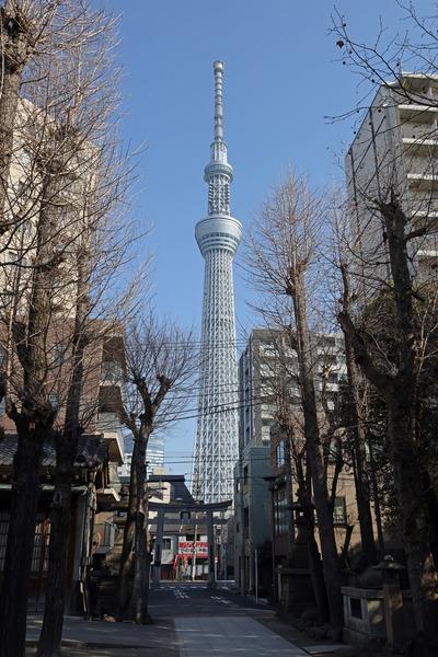 牛嶋神社から見た東京スカイツリー