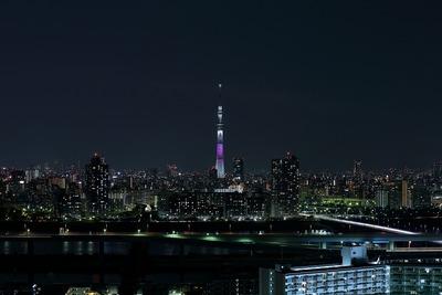 東京スカイツリー桜特別ライティング「舞」