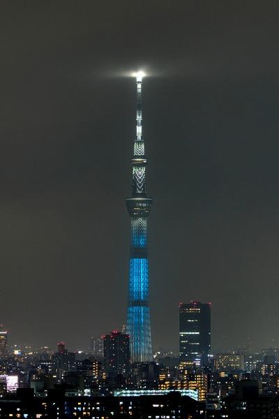 東京都をイメージした特別ライティング
