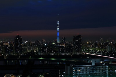 東京スカイツリー夜景「冬粋」