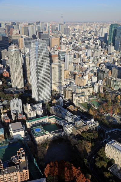 東京タワーの影と東京スカイツリー