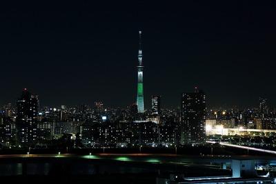 東京スカイツリー夜景「ホワイトツリー」
