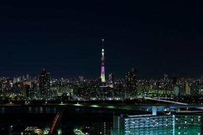 東京スカイツリー明花のハイビスカス