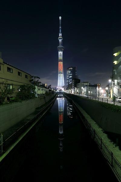 東京スカイツリー「和食の日」ライティング「ちらし寿司」