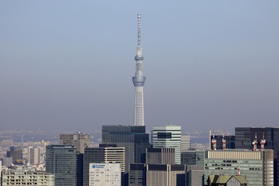 渋谷スカイから見た東京スカイツリー