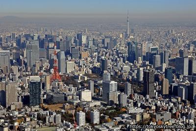 東京タワーと東京スカイツリー空撮